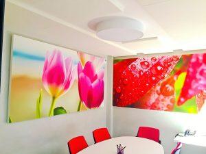 Design acoustique - Design Tableau acoustique picture posé au mur par suspension
