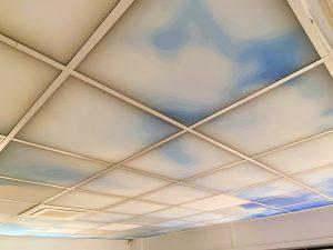 Faux-plafond acoustiques - Faux-plafond Faux plafond acoustique en absorber ampbient plano picture suspendu