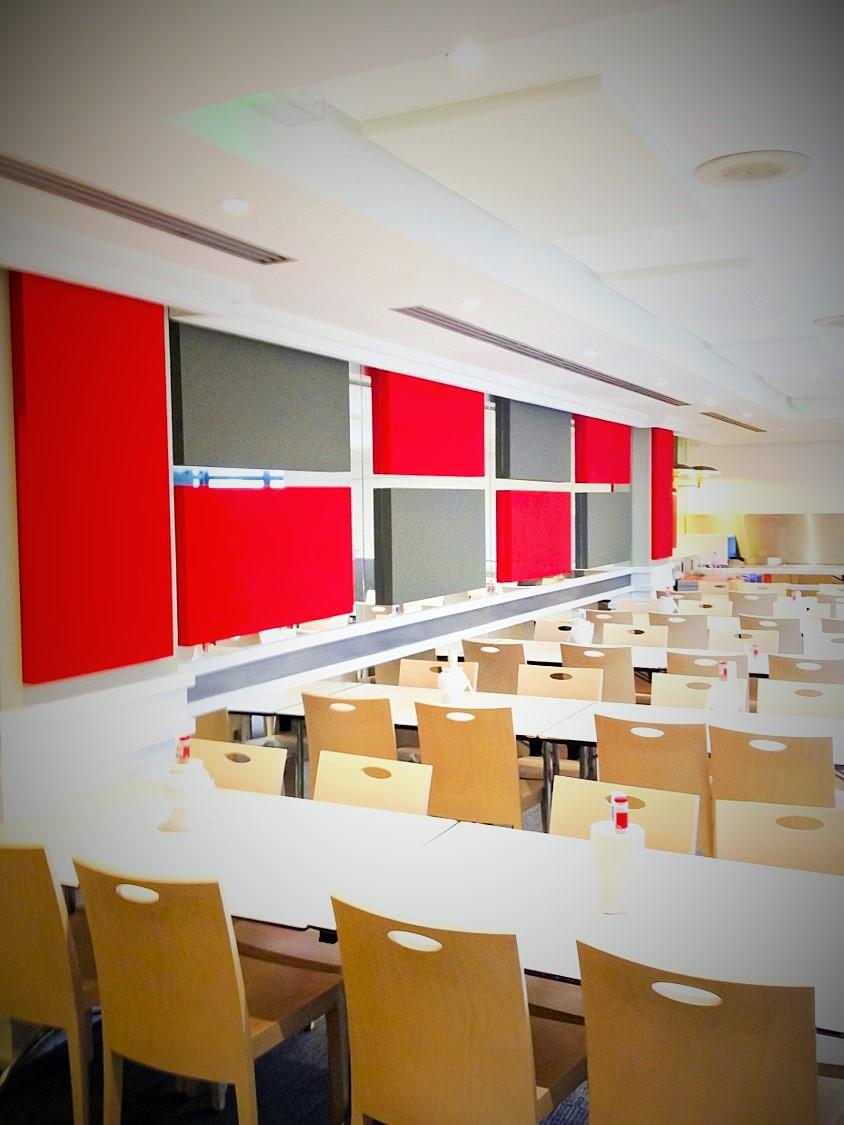 Panneaux acoustiques - Panneaux Acoustic Panel 2V color posé au mur par suspension